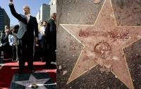 Вандал разбил звезду Трампа на аллее славы Голливуда
