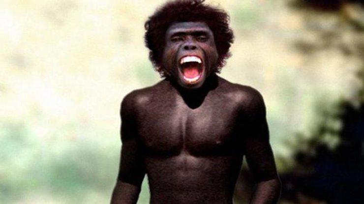Загадки эволюции: из-за чего вымерли другие люди
