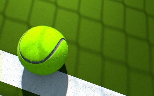 Tennis: Poland's Radwańska enters round two at Doha