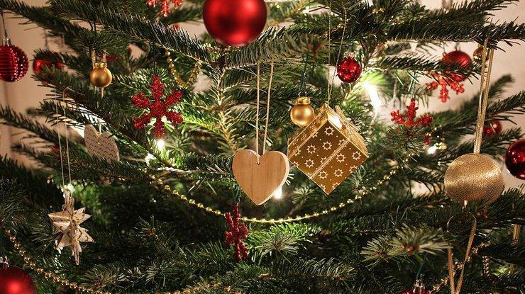 Новый год 2018: чем вредна елка для здоровья