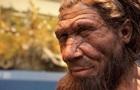 Ученые вырастят мозг неандертальца