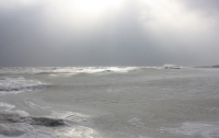 На море в Мариуполе нашли кишечную палочку