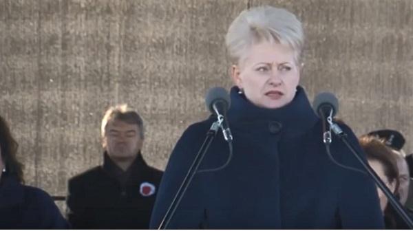 Польские лидеры поздравили литовцев с годовщиной независимости