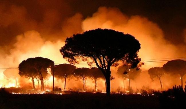 Польские туристы эвакуированы из охваченных пожарами регионов Испании
