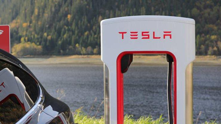 Завод Tesla планируют построить в Украине