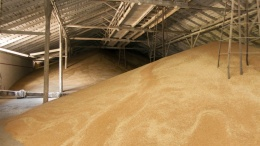 Один из крупнейших международных зернотрейдеров продает элеваторы в Украине