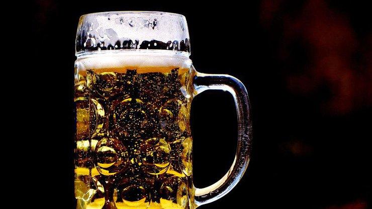 От каких болезней спасает пиво: ответ ученых