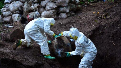 В Мексике раскопали крупнейшую в истории страны партию наркотиков: впечатляющие фото
