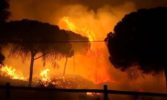 В Испании из-за лесного пожара эвакуировали свыше 2 тыс. человек
