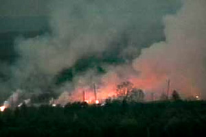 Лісові пожежі в Дніпропетровській, Миколаївській та Херсонській областях локалізовані