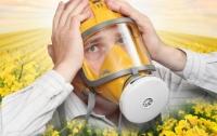 Вспышка аллергии: в Украине сверхвысокая концентрация пыльцы амброзии