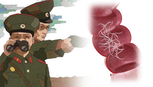 Из живота беглеца из КНДР достали огромного червя