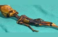 Тайна гуманоида из пустыни Атакама раскрыта (ФОТО)
