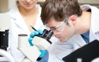 Нашей планете угрожает опаснейший грибок, - ученые