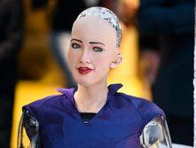 Отвечая на вопрос, где находится Украина, робот София сказала, что в Европе