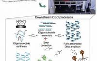 Генетики создали принтер для печати синтетических форм жизни