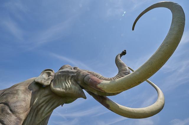 В Варшаве нашли кости мамонта или лесного слона