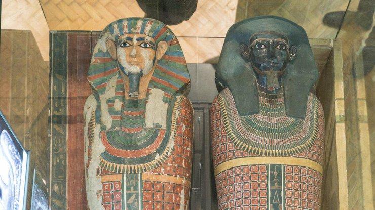 Генетики раскрыли вековую тайну древнеегипетских мумий