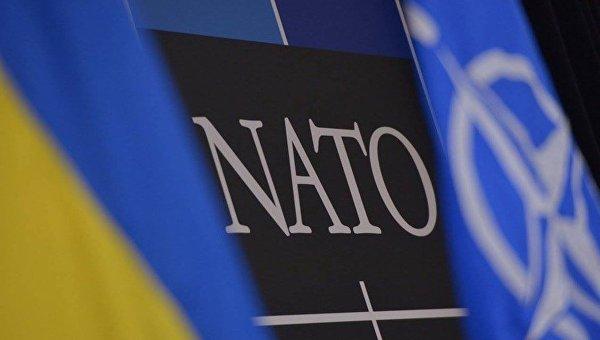 В Брюсселе подтвердили, что заседания комиссии НАТО-Украина не планируются