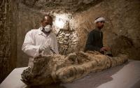 В Египте показали находки из недавно вскрытой гробницы