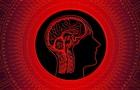 У человечества постепенно снижается IQ − ученые