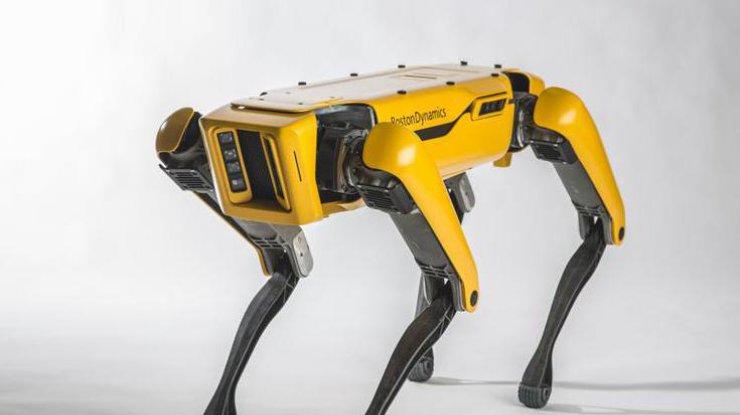 Робот от Boston Dynamics научился открывать дверь (видео)