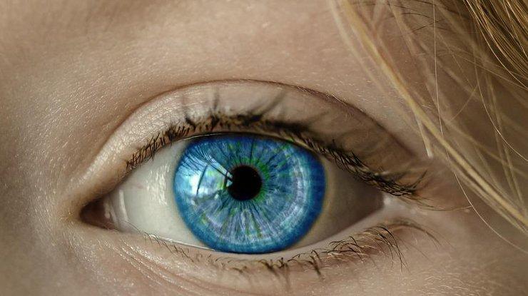 Всемирный день зрения: какие продукты полезны для глаз