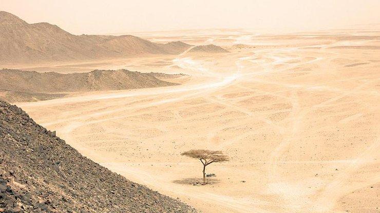 В аравийской пустыне обнаружили загадочные каменные порталы
