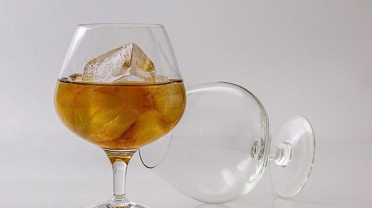 Какие дозы алкоголя разрушают мозг: выводы ученых