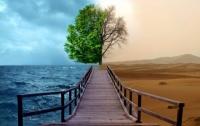 Ученые связали изменения климата с использованием микроволновок