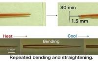 Шагающие нанокристаллы могут стать основой кристаллической робототехники