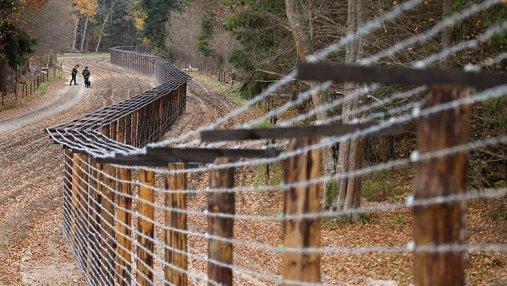 Дания построит забор на границе с Германией: известна причина