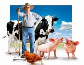 Наш край закликає уряд спростити отримання держдотацій для фермерів