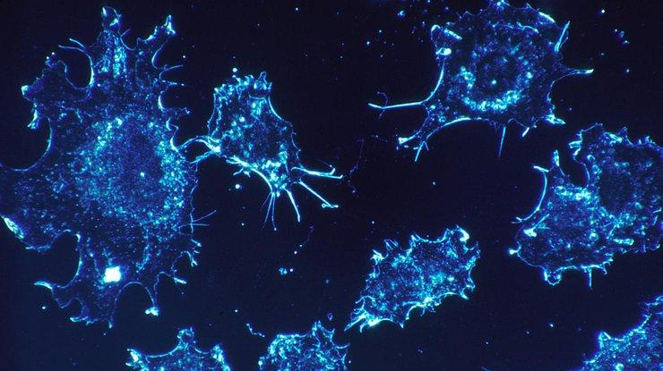 Ученые создали нанороботов для лечения рака