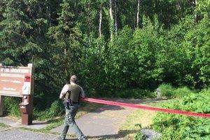 На Аляске медведь загрыз 16-летнего участника забега